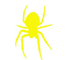 Yellow Spider by kwg2200
