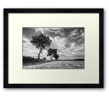 Black And White Trees Framed Print