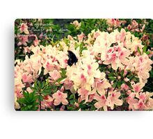 Butterfly with Haiku Canvas Print