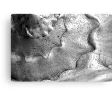 Natural texture Canvas Print