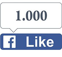 Facebook 1000 Likes, Friends and Views by SKpixel