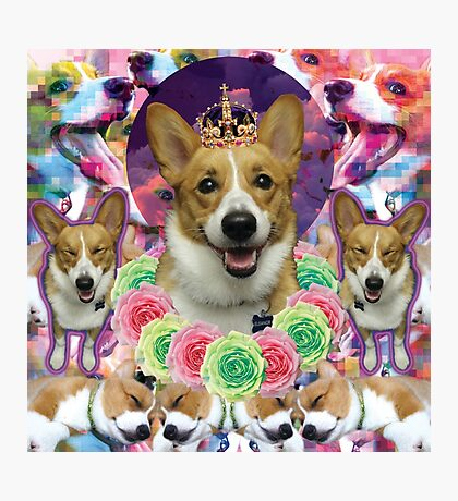 SPACE CORGI Photographic Print
