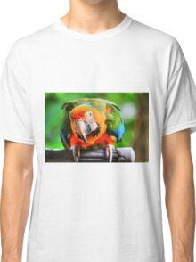 Hybrid Macaw Classic T-Shirt