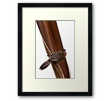 Perched on a Palm Framed Print