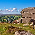 Bell Tor  Dartmoor   UK by James  Key