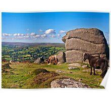 Bell Tor  Dartmoor   UK Poster