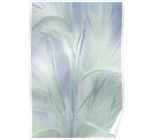 Whisper in the Moon Light. Grass Pastels Poster