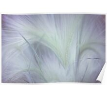 Dreamy Softness. Pastel Grasses Poster