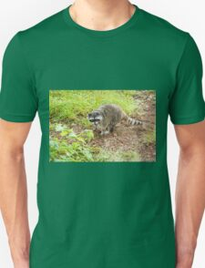 What hole? Racoon T-Shirt