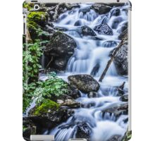 Cadair Idris Waterfall iPad Case/Skin