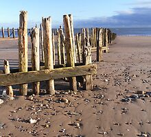 Dawlish Warren by peely20