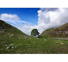 Sycamore Gap - Hadrian's Wall Photographic Print