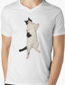 Thriller Cat Mens V-Neck T-Shirt