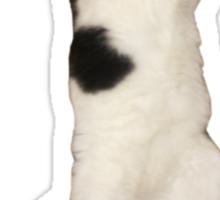 Thriller Cat Sticker