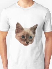 Siemese Kitten  T-Shirt