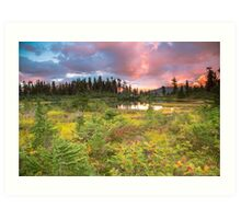 Early autumn meadow Art Print