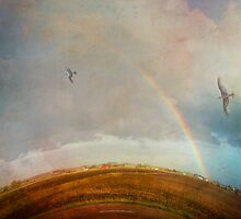 Rainbow Flight by calamarisky