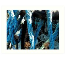 Blue Harbour Rope Art Print