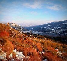 """Silverwood Lakes, California"" by Glenn McCarthy"