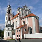 Beauty in Pink - St. Catherine's Church, Vilnius by bubblehex08