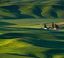 Beautiful Rolling Farmland by printscapes