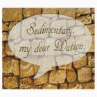 Sedimentary my dear Watson by funkyworm