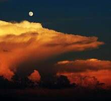 Sea of Clouds by Kerri  Crau