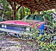 HDR Charger barn find by GWGantt