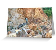 Lonely wild brown pelican HDR Greeting Card
