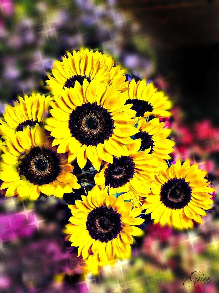 """Sunny Days"" by Gail Jones"