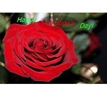 Rose valentine Photographic Print