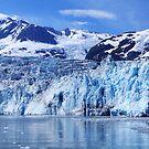 Glacier Bay 2013 by Maureen Clark