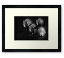 ©DA Nautilus Fractal IAB Monochromatic Framed Print