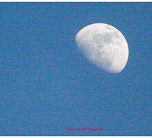 Moon (11) by photographyman