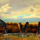 Taste The Rainbow by Arla M. Ruggles