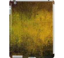 Abstract iPad Case Vintage Retro Cool Lovely New Grunge Texture iPad Case/Skin