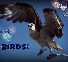Banner - Challenge Winner - The birds by cathywillett
