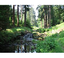 Waterfall at Cragside Photographic Print