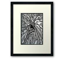 Regal A Tree Ink Drawing Framed Print