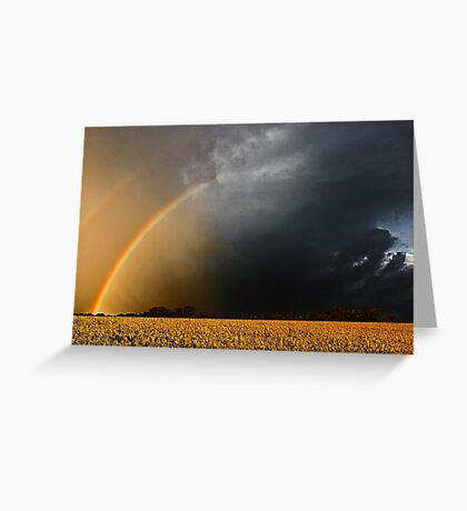 Storm Over Canolla Field  Greeting Card