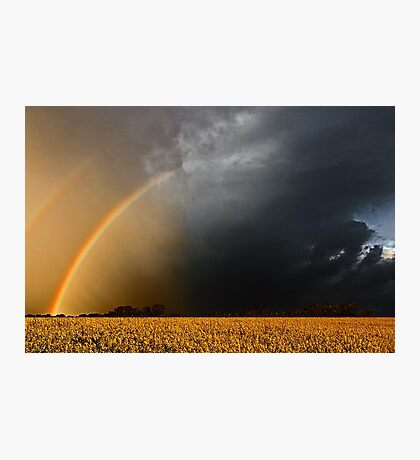 Storm Over Canolla Field  Photographic Print