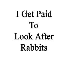 I Get Paid To Look After Rabbits  Photographic Print