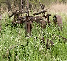 Antique Plow Overgrown in a Field by rhamm