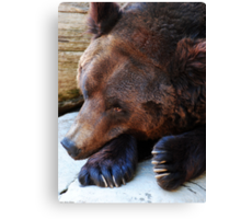 A Bears Life Canvas Print