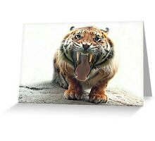 ..an angry Tiger ready to jump you...               [FEATURED] Greeting Card