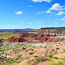 Painted Desert by George I. Davidson