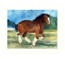 Clydesdale Draft Horse Art Print
