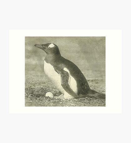 Penguin drawing Art Print