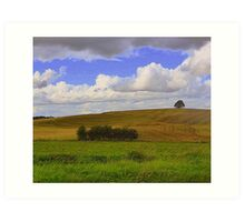 Tyrone Farmland Art Print