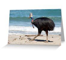 Etty Bay Cassowary Greeting Card